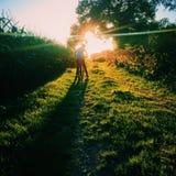 Solnedgångcykelritt till och med fälten arkivbild
