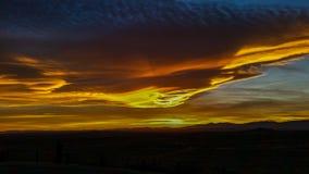 Solnedgångdelträd Arkivfoto