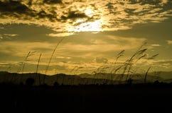 Solnedgången är kommande på min ferie Royaltyfria Foton