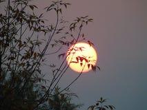 Solnedgången är mycket beautriful arkivbild
