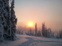 Solnedgången över snön Arkivbilder