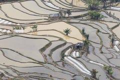 Solnedgången över YuanYang ris terrasserar i Yunnan, Kina, en av de senaste UNESCOvärldsarven Fotografering för Bildbyråer