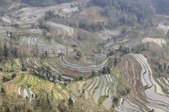 Solnedgången över YuanYang ris terrasserar i Yunnan, Kina, en av de senaste UNESCOvärldsarven Royaltyfria Bilder