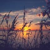 Solnedgången Arkivfoton