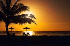 Solnedgången eller soluppgång med gömma i handflatan och skeppet i Maldivernaen, exotiska destinationer för ferie eller bröllopsr arkivbilder