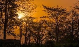 Solnedgången färgar Royaltyfria Bilder