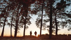 Solnedgången för konturn för två turistmän går att fotvandra i skogsolljuset grupp för lopploppturism av att gå för turister arkivfilmer