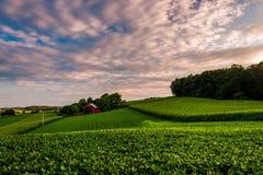 Solnedgången fördunklar över en lantgård i sydliga York County, Pennsylvania royaltyfria bilder