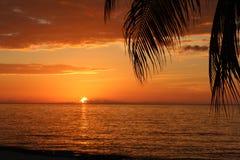 Solnedgången gömma i handflatan havet Royaltyfria Foton
