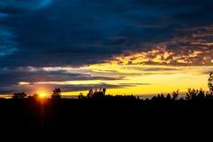 Solnedgången i den mörka skogen royaltyfria foton