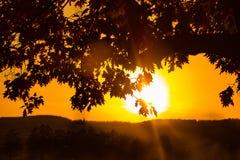 Solnedgången i höst Arkivfoto