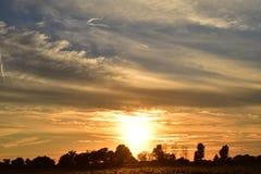 Solnedgången i havrefältet precis för precis för solen går ner Arkivbild