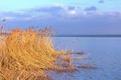 Solnedgången i vinter från a fryste sjön Arkivbilder