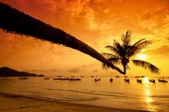 Solnedgången med gömma i handflatan och fartyg på den tropiska stranden Royaltyfria Foton