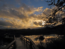 Solnedgången på parkerar Royaltyfria Foton
