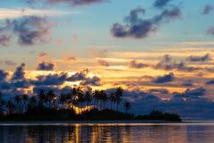 Solnedgången på sjösidan, mörka konturer av gömma i handflatan royaltyfri fotografi