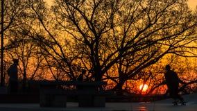 Solnedgången på skridskon parkerar Royaltyfri Foto