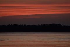 Solnedgången reflekterade på sjön till och med trädkontur Arkivbild