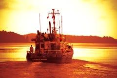 Solnedgången seglar royaltyfria bilder