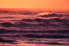 Solnedgången vinkar Victoria Australia Royaltyfri Foto