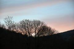 Solnedgångfärgblått och rosa färger Arkivfoton