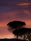 Solnedgångfärger på höstnedgångplats Royaltyfria Foton