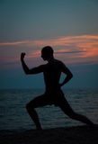 Solnedgångkontur av praktiserande kampsporter för man Royaltyfri Bild