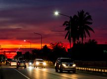 Solnedgångljus bak kokospalmerna och vägen royaltyfri foto