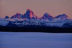 SolnedgångljusAlpen glöd på Tetons Teton berg royaltyfri bild