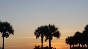 Solnedgångmadeirastrand Florida Arkivfoton