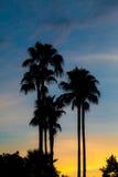 Solnedgångparadis Arkivbild