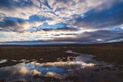 Solnedgångreflexion i våtmarklandskap royaltyfri foto