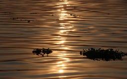 Solnedgångreflexion på floden Arkivfoton