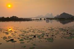 Solnedgångsikt av det lotusblommaträsk och berget Royaltyfria Bilder