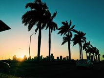 Solnedgångsikt av Miami Arkivbilder