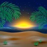 Solnedgångsikt i strand Royaltyfria Bilder