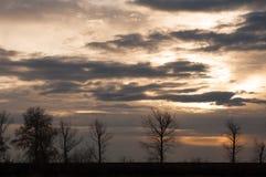 Solnedgångsikt och trädkonturer Royaltyfri Fotografi