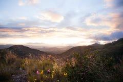 Solnedgångsoluppgånglandskap med färgrika moln och lösa blommor Arkivbild