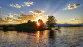 Solnedgångstrålar till och med träd på sjön arkivbild