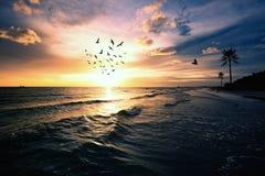 Solnedgångstrand, Florida dramatisk afton Royaltyfri Bild