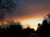 solnedgångsunbury december perfekt afton Arkivbilder