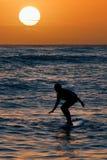 solnedgångsurfare Royaltyfri Foto