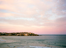 Solnedgångsurfare på den Bondi stranden Arkivbild