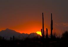 solnedgångthundershower Arkivbilder