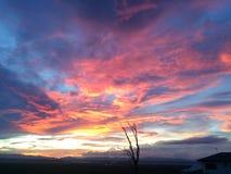 SolnedgångTownsville ö Royaltyfri Fotografi