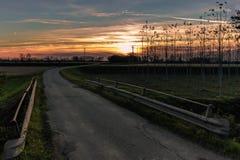 Solnedgångväg i bygden Fotografering för Bildbyråer