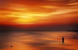 Solnedgångvänner Royaltyfri Foto