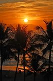 solnedgångvallarta Royaltyfri Foto