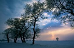 solnedgångvinter Royaltyfri Bild