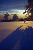 solnedgångvinter Royaltyfri Fotografi